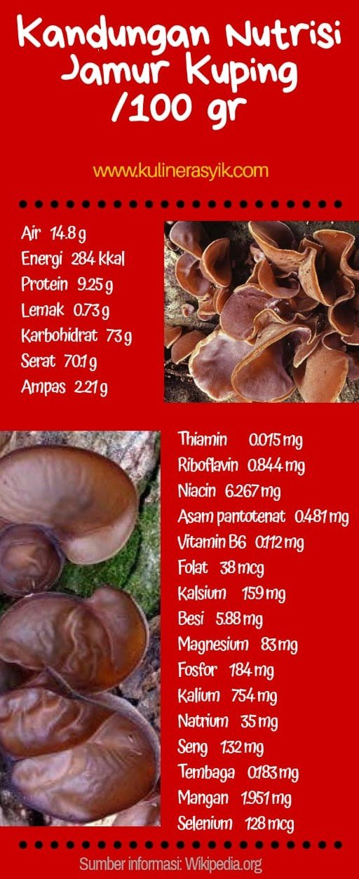 jamur-kuping-makanan-dari-hutan-manfaat